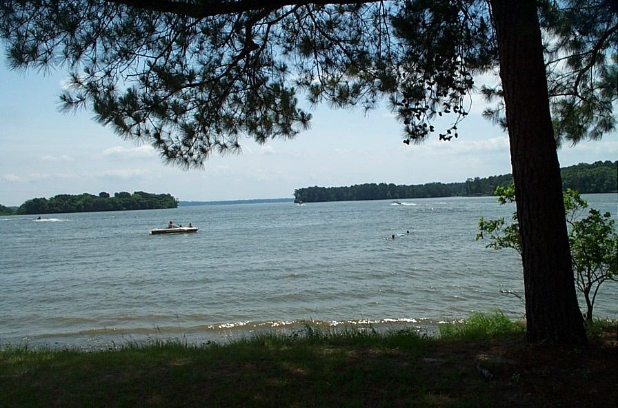 Lake-livingston-shore